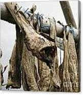 Drying Monkfish On A Stack Canvas Print