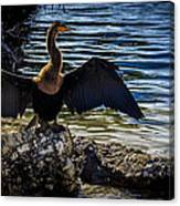 Drying Time Canvas Print