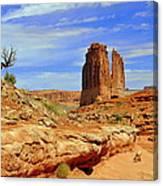 Dsc_3690.jpg Canvas Print