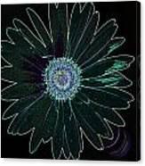 Dscn5419c6-001 Canvas Print