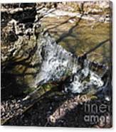 Dublin Ohio Waterfall In Spring 1 Canvas Print