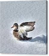Duck Angel Canvas Print