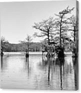 Duck Blind On Caddo Lake Canvas Print