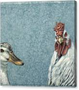 Duck Chicken Canvas Print