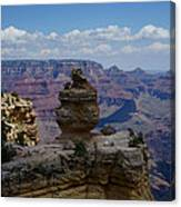 Duck On A Rock Grand Canyon Canvas Print