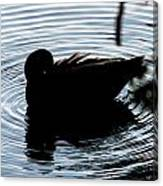 Duck Waves Canvas Print