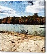 Ducks At The Beach Again Canvas Print