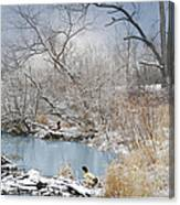 Ducks By The Pond Canvas Print