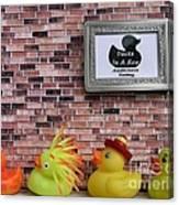 Ducks In A Row Canvas Print