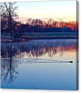 Duck's Sunrise Canvas Print
