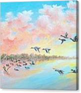Ducks Two Canvas Print