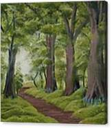 Duff House Walk Canvas Print
