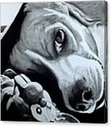 Duffy Canvas Print