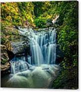 Dukes Creek Falls Canvas Print