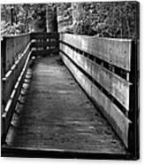 Dukes Creek Falls Walkway Canvas Print
