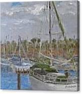Dulcinea  Canvas Print