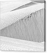 Dune Abstract, Paryang, 2011 Canvas Print