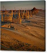 Dune Erosion Fence Outer Banks Nc Img3748 Canvas Print