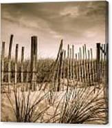 Dune Fence Canvas Print