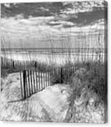 Dune Fences Canvas Print