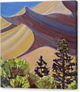 Dune Field Canvas Print