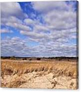 Dune Grass And Clouds Canvas Print