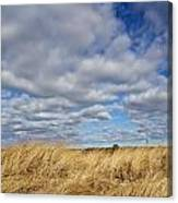 Dune Grass And Sky Canvas Print