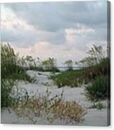 Dune Sea Oats Canvas Print