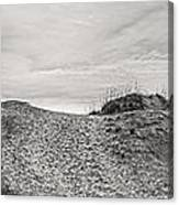 Dune Trail Canvas Print