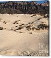 Dunes At The Guadalupes Canvas Print