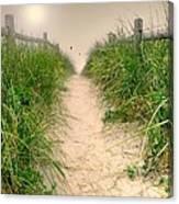 Dunes Catch Light Canvas Print
