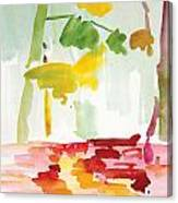 Dunnfield-creek-92013-16x12 Canvas Print