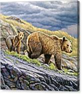 Dunraven Pass Grizzly Family Canvas Print