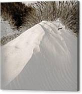 Duotone Dune Canvas Print