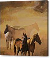 Dust Bowl Canvas Print