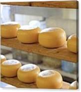 Dutch Cheese Canvas Print