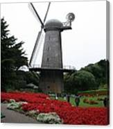 Dutch Windmill In Golden Gate Park Canvas Print
