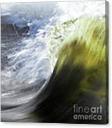 Dynamic River Wave Canvas Print
