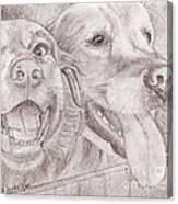 Eager Best Friends Canvas Print