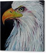 Eagle Eye Canvas Print