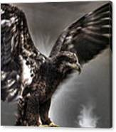 Eagle First Landing Canvas Print