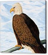 Eagle In Alaska Canvas Print