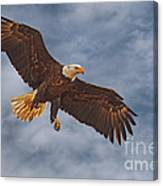 Eagle In The Sky Canvas Print