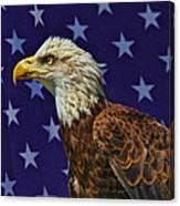 Eagle In The Starz Canvas Print