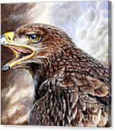 Eagle Cry Canvas Print