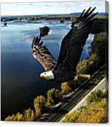 Eagle Over Mississippi  Canvas Print