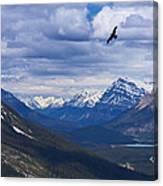 Eagle Over Peyto Lake Canvas Print