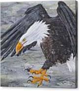 Eagle Study 2 Canvas Print