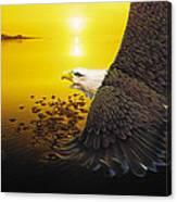 Eagle Sunset Canvas Print