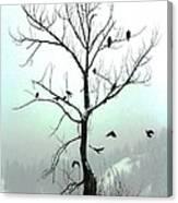 Eagles And Kin Canvas Print